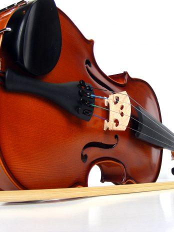 Vioara acustica Forenza