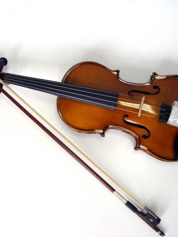 Vioara acustica Cremona